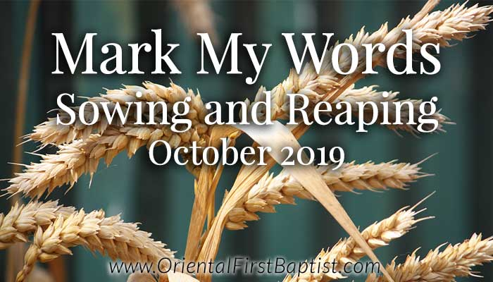 Mark My Words Article - Sowing and Reaping - October 2019