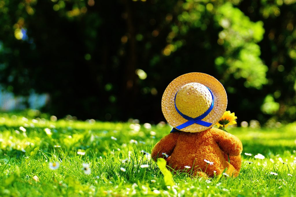 Image of teddy bear on grass for the Kennedy Home - Baptist Children Home of NC